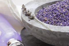 Champô da alfazema dos produtos do cuidado do Wellness Fotografia de Stock