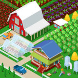 Champ agricole de ferme rurale isométrique avec la serre chaude et le jardin Photos stock