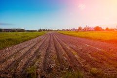 Champ arable avec le ciel clair et le soleil images libres de droits
