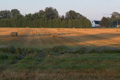 Champ Autumn Hay Bales d'agriculteurs Image stock
