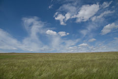 Champ avec le ciel bleu nuageux Photos stock