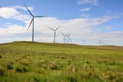 Champ d'éoliennes photographie stock libre de droits