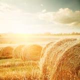 Champ d'été avec Hay Bales au coucher du soleil image libre de droits