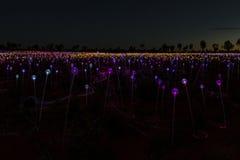 Champ d'affichage d'art de lumières dans Yulara photographie stock