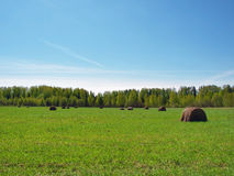 Paysage rural en Russie centrale Photographie stock