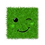 Champ 3D de place d'herbe verte Sourire de clin d'oeil de visage Icône herbeuse souriante d'émoticône, fond blanc d'isolement Sig illustration libre de droits