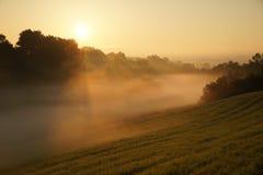 Champ d'herbe brumeux avec la grange à peine évidente Photographie stock