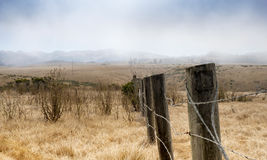 Champ d'herbe sèche chez Hearst San Simeon State Park photos stock