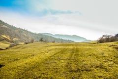 Champ d'herbe verte sur le ciel bleu avec la montagne à éloigné lointain Traînées de pneu de voiture sur l'herbe Photographie stock