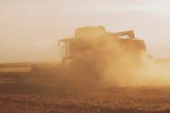 Champ de blé au coucher du soleil avec une moissonneuse de cartel dans l'action photographie stock libre de droits