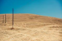 Champ de blé d'or dans un jour ensoleillé Photographie stock libre de droits