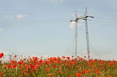 Champ de blé et puissance Polonais Photographie stock libre de droits