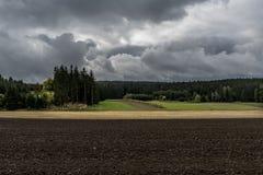 Champ de Brown, pré jaune et vert, forêt noire à l'arrière-plan et nuages foncés Photographie stock libre de droits