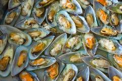 Champ de cablage à couches multiples d'huître Image libre de droits