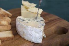 Champ de cablage à couches multiples de fromage Image stock