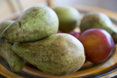 Champ de cablage à couches multiples de fruit Photos libres de droits