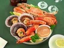 Champ de cablage à couches multiples de fruits de mer Image libre de droits