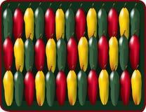 Champ de cablage à couches multiples de poivre Photos libres de droits