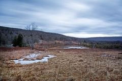 Champ de Canaan Valley et étang de castor en Virginie Occidentale Image libre de droits