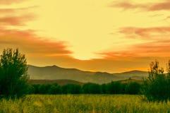 Champ de coucher du soleil Images libres de droits