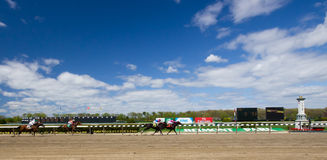 Champ de courses 2011 de Belmont Park Photo libre de droits