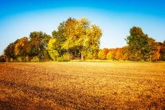 Champ de ferme d'automne Photographie stock libre de droits