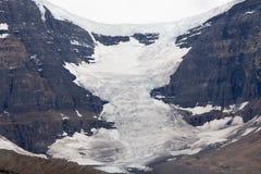 Champ de glace de Colombie photographie stock