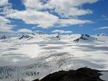 Champ de glace Kenai Alaska de Harding Images libres de droits