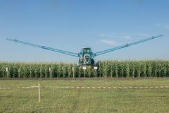 Champ de maïs de arrosage agricole de système d'irrigation le jour ensoleillé d'été photos libres de droits