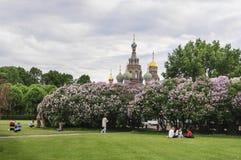 Champ de Mars à St Petersburg, Russie Photo stock