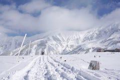 Champ de Mudoro en novembre avec le fond de montagne de neige Photographie stock libre de droits