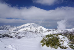 Champ de Mudoro en novembre avec le fond de montagne de neige Photo stock