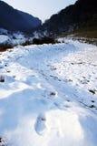 Champ de neige images libres de droits