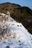 Champ de neige photographie stock
