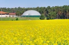 Champ de viol d'usine de biogaz Images stock
