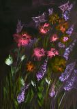 Champ des roses et des lupines avec des papillons la nuit Photographie stock libre de droits