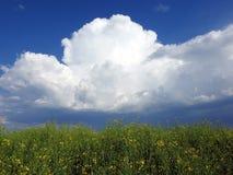 Champ et beau ciel nuageux, Lithuanie Image stock