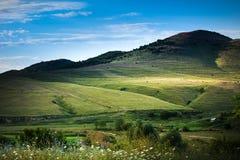 champ et ciel bleu - delta de Danube, Tulcea, Roumanie photos libres de droits
