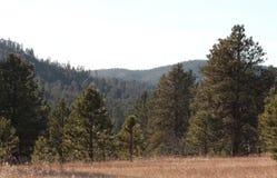 Champ et colline, le Dakota du Sud Image stock