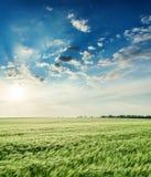Champ et coucher du soleil verts en ciel dramatique Photo stock