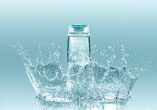 Champô hidratando para o cabelo seco Fotografia de Stock Royalty Free