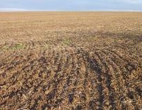 Champ labouré avec le sol brun Photos stock