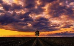 Champ labouré par jour nuageux Image libre de droits