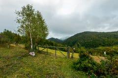 Champ rural herbeux derrière la barrière photo stock