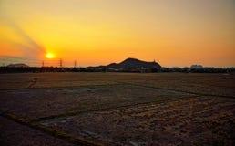 Champ sec au coucher du soleil Photo libre de droits
