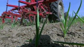 Champ traité par tracteur planté aux oignons banque de vidéos