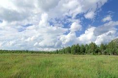 Champ vert d'été sous le ciel bleu avec de beaux nuages sur le fond de forêt Photo stock