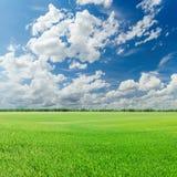 champ vert et ciel bleu avec de bas nuages Photo stock