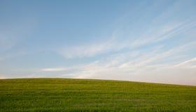 Champ vert et environnement bleu de ciel nuageux Photo libre de droits