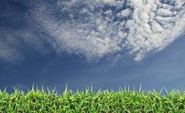 Champ vert, herbe, ciel bleu et nuages blancs Photo libre de droits